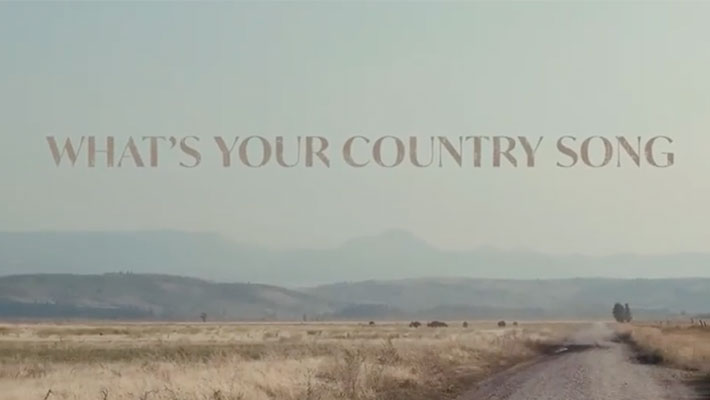 "Cover art for Thomas Rhett's ""What's Your Country Song"""