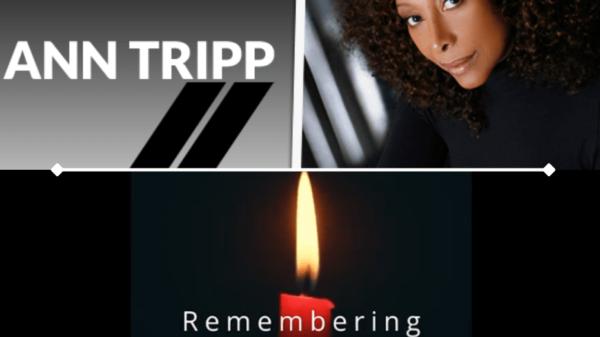 candle ann tripp