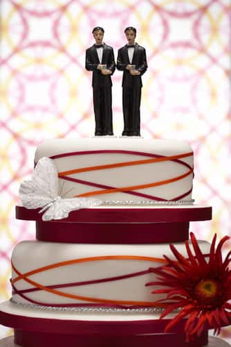 Cake with Two Grooms