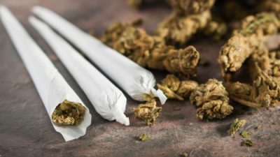 Joints and marijuana buds