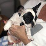 #TBTwJnD Alfie: baby alfie