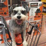 Silent J at Home Depot