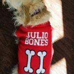 Julio-Bones-Chris