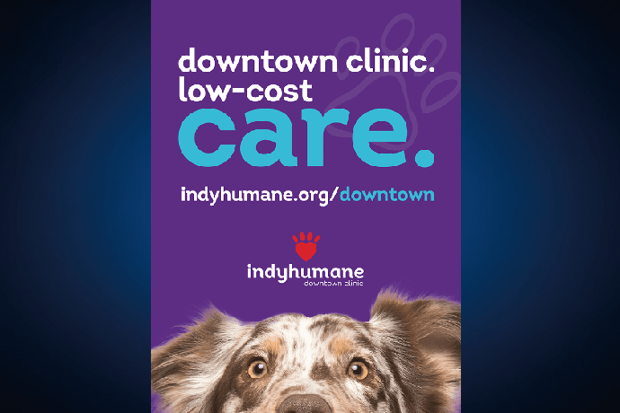Purple poster for IndyHumane with a spotted dog at the bottom.
