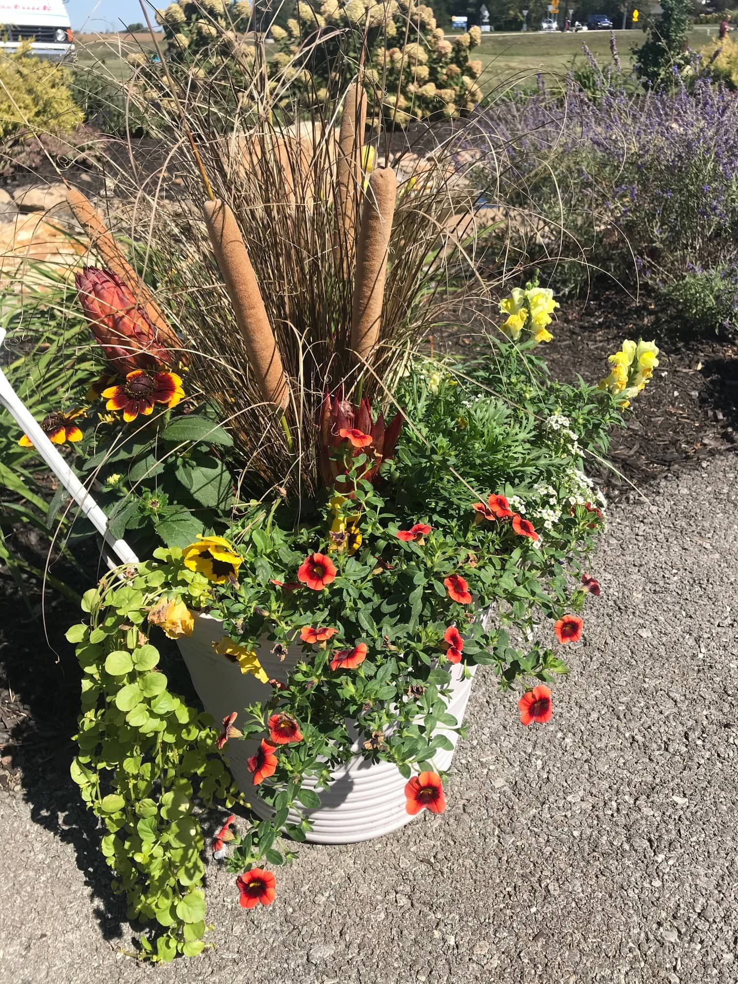 Fall Planter with catacombs