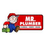 Mr. plummer