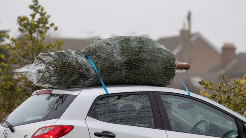 A car drives off with a Christmas tree strapped to the roof at Digby Farm Christmas Trees in Rutland. Families are preparing for Christmas after the UK Government and devolved administrations have agreed a temporary easing of coronavirus restrictions over the festive period, allowing three households to mix in a bubble