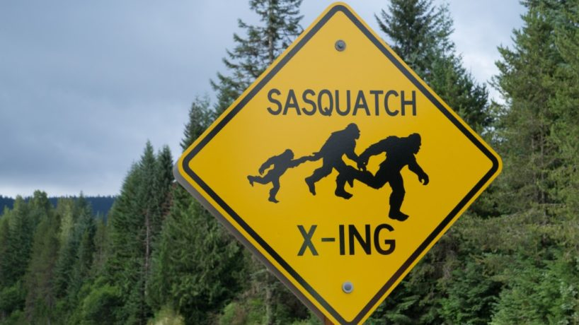 A Bigfoot crossing sign in the wilderness.