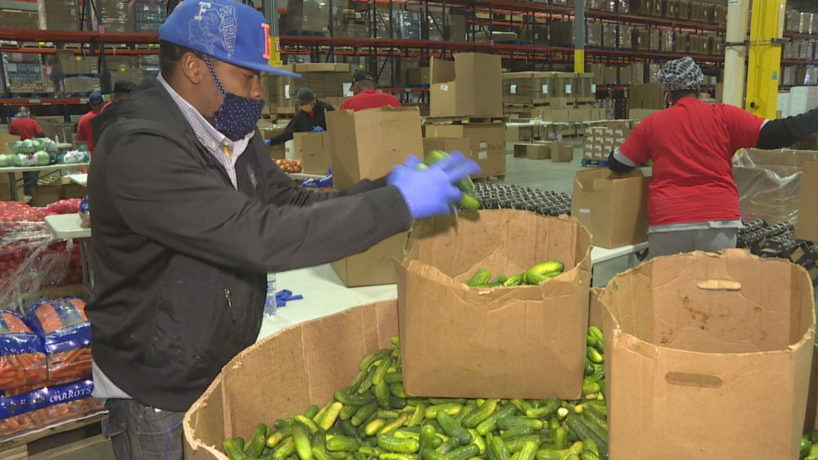 A man sorts vegetables at Gleaners Food Bank.