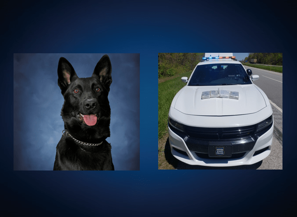 Photo of K9 Axel, photo of the trooper's car with nine pounds of fentanyl on the hood