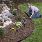 lady installing black coil edging in flower bed