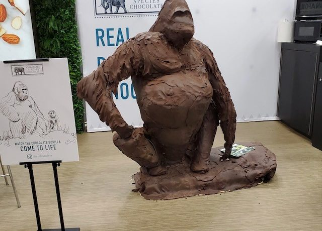 A large gorilla carved out of chocolate, unfinished