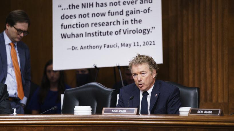 Rand Paul during Senate hearing