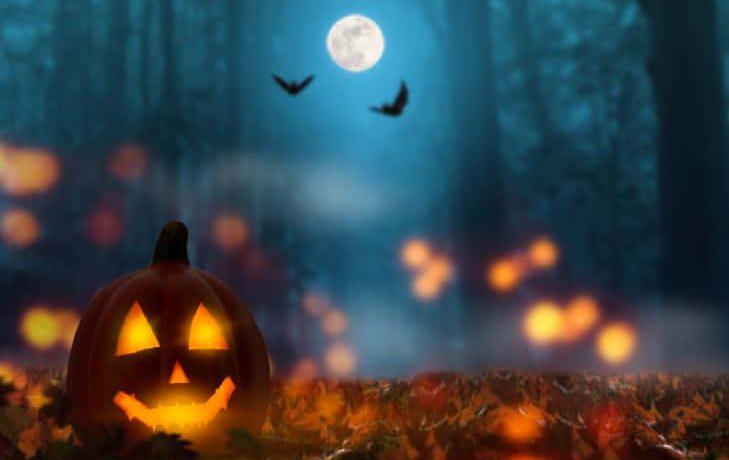 jack lantern in the halloween night