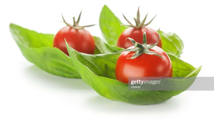 cherry tomatoes and basil on a white background