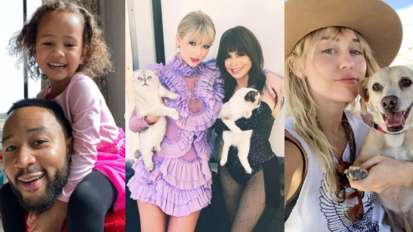 From left to right: John Legend with his daughter, taylor swift and Paula Abdul holding cats, and Miley Cyrus with her dog smiling