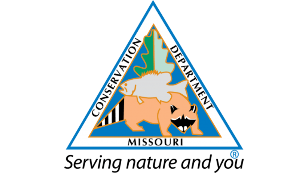 MDC ONLINE PROGRAM OFFERS TIPS ON FRYING FISH
