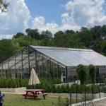 Hermitage-Farm-26