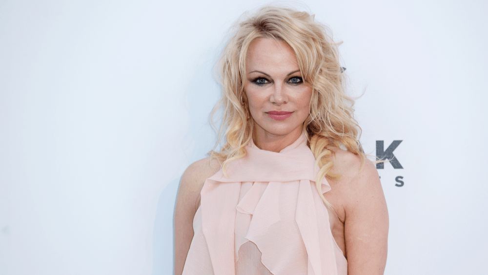 Pamela Anderson announces marriage to bodyguard Dan Hayhurst on Christmas Eve