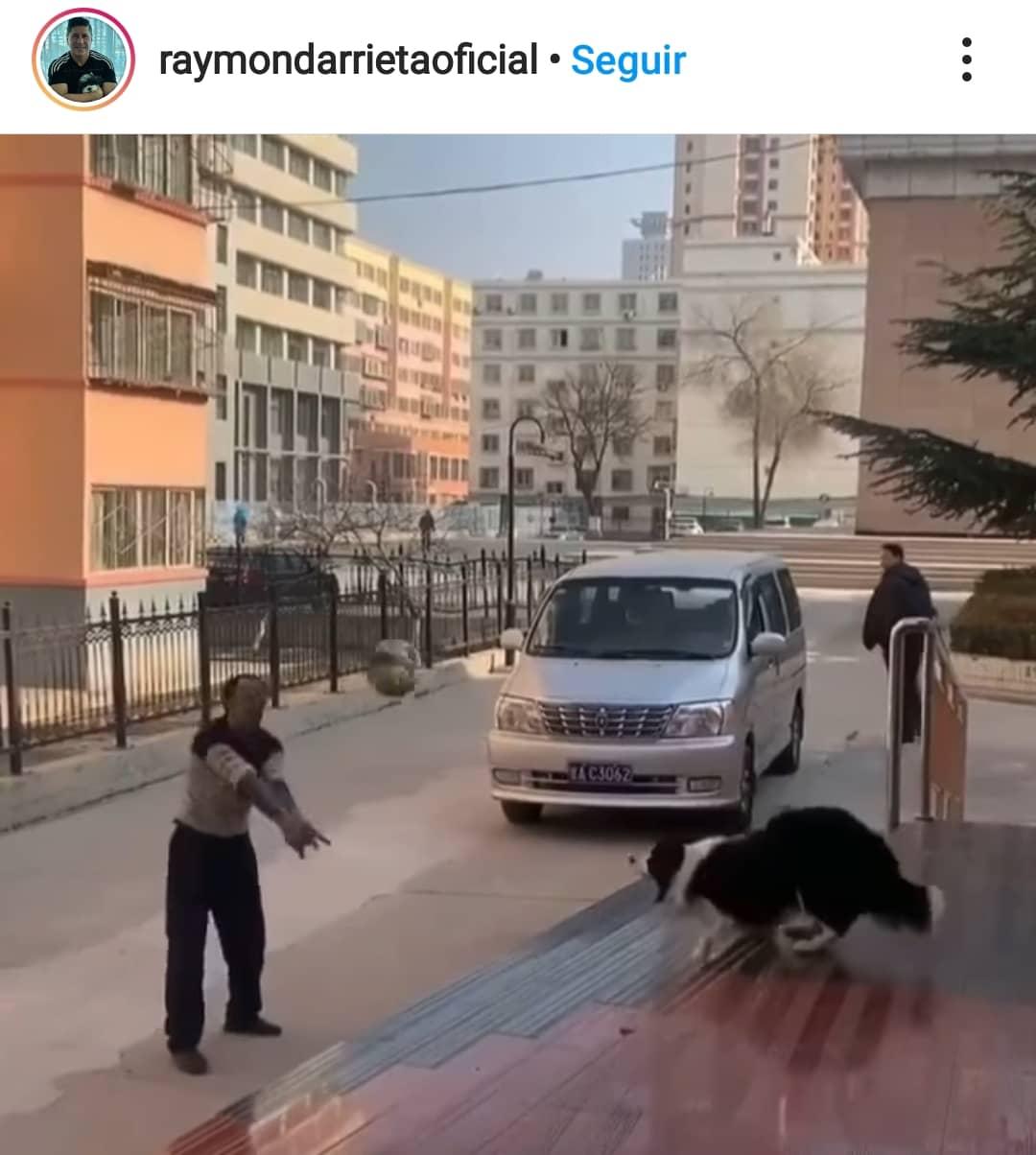 Screenshot_20210222-084143_Instagram