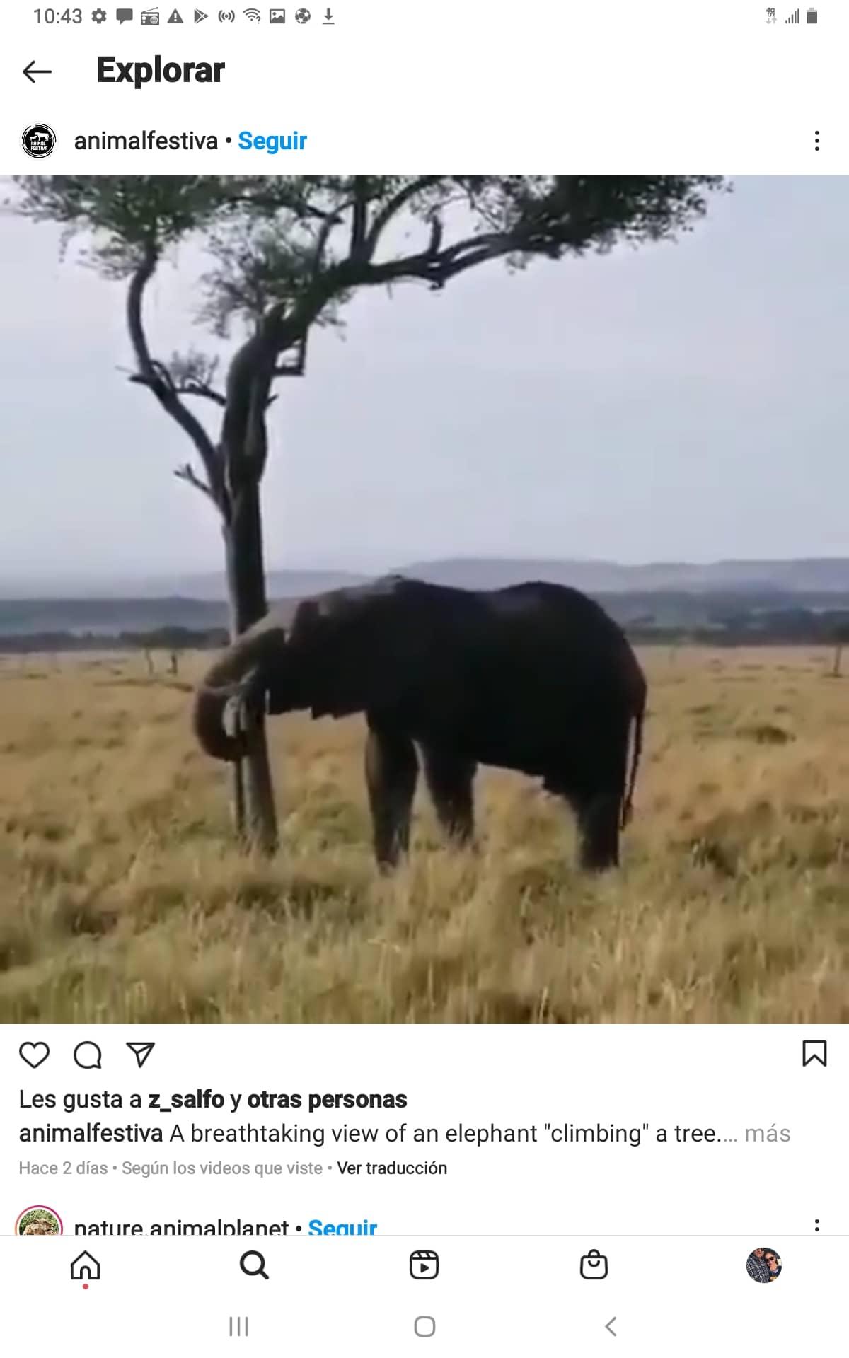 Screenshot_20210614-104336_Instagram