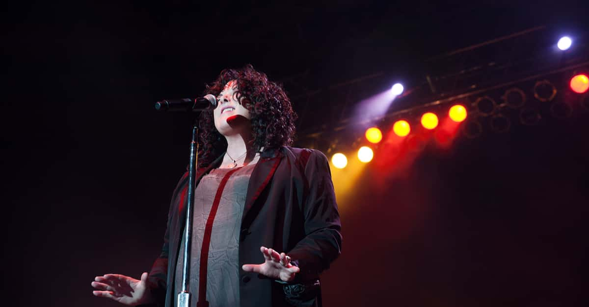 VIDEO: Ann Wilson releases a song..