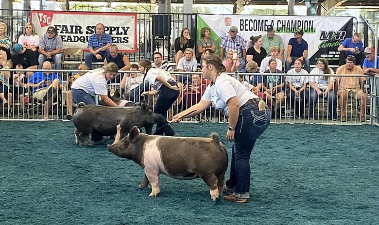 Silex FFA members find success at Missouri State Fair