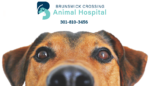 Brunswick Crossing Animal Hospital