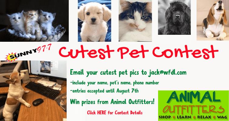 Slider-cutest-pet-contest-1