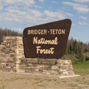 Body found in Bridger-Teton National Forest believed to be missing woman Gabby Petito
