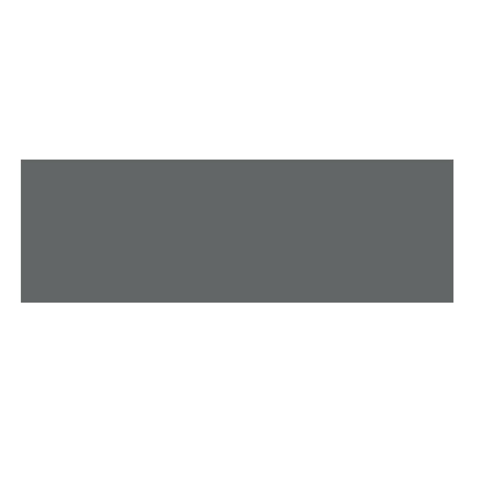 Singer Financial Logo