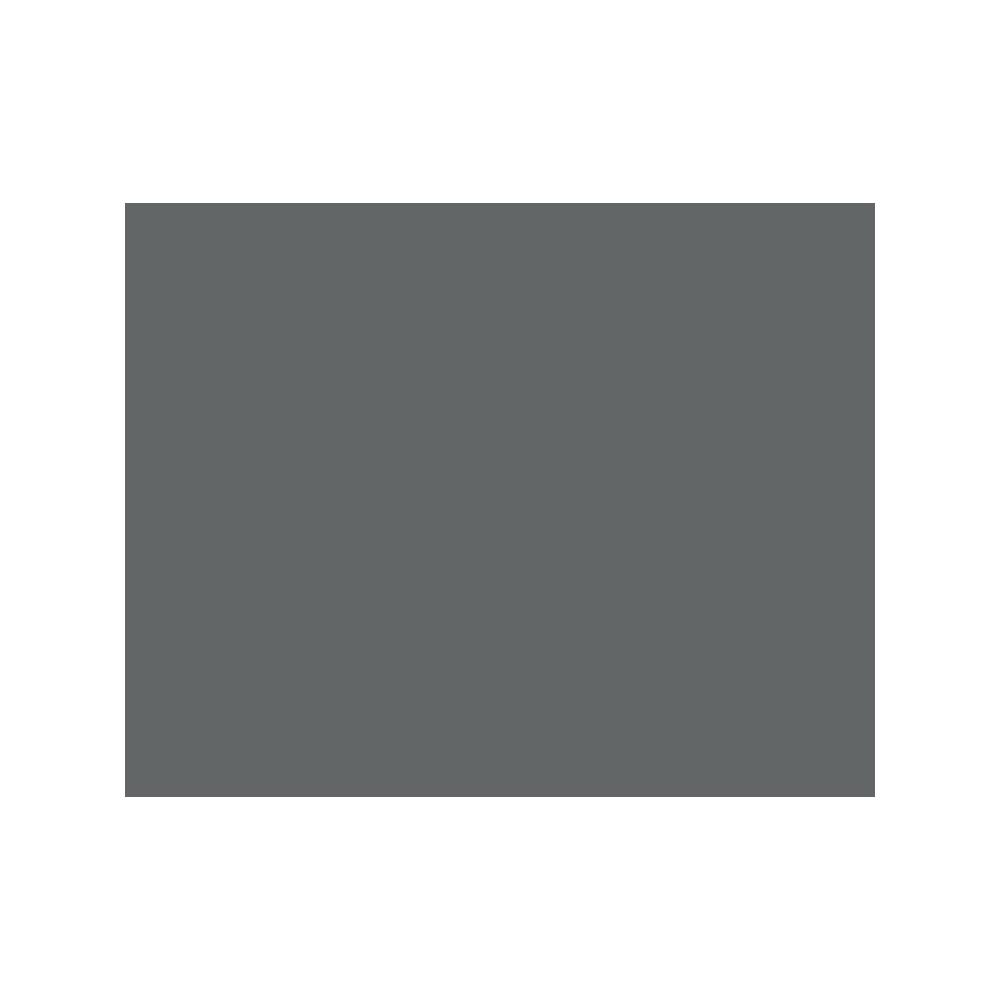 Steak n Shake Logo