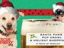 Santa-Paws-Pup-Crawl