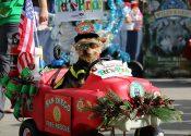 2018 San Diego Vet + Pet West Gaslamp Holiday Pet Parade