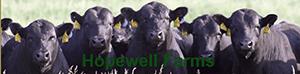 Hopewell Farms