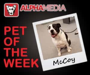 Pet of the week – McCoy