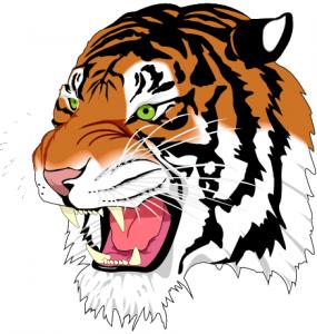 tiger-grab