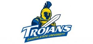 DSU-Logo