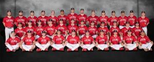 2017 Baseball Banner