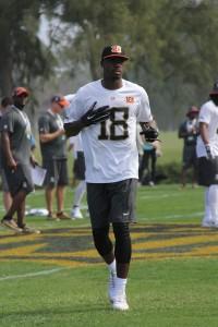 AJ Green of the Cincinnati Bengals
