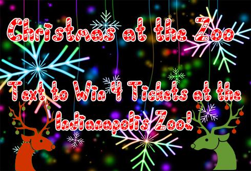 Christmas At The Zoo.Christmas At The Zoo Z 92 5