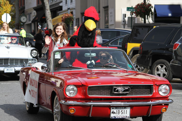 The Greenwich High School mascot takes a ride down Greenwich Avenue during Saturday morning's Homecoming parade. (Avery Belicka photo)