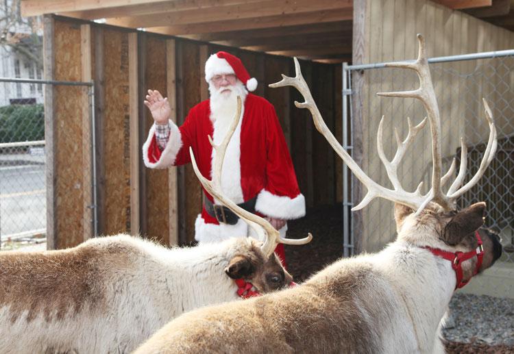 santa and his reindeer return to greenwich