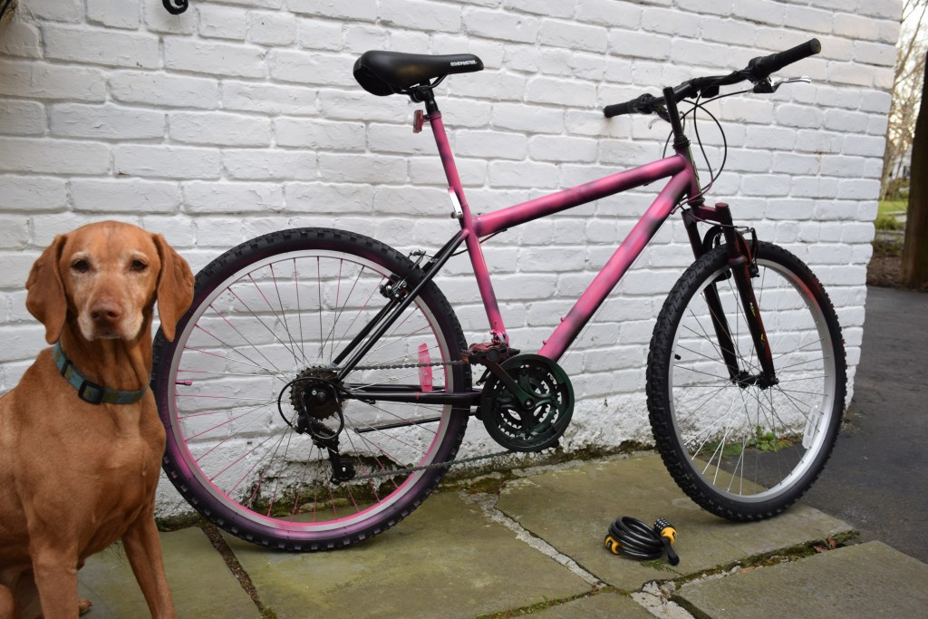 Greenwich resident Stephen Kilcullen spray painted his bicycle a bright pink color after a string of bike thefts at local Metro-North railroad parking lots. (Contributed Photo)