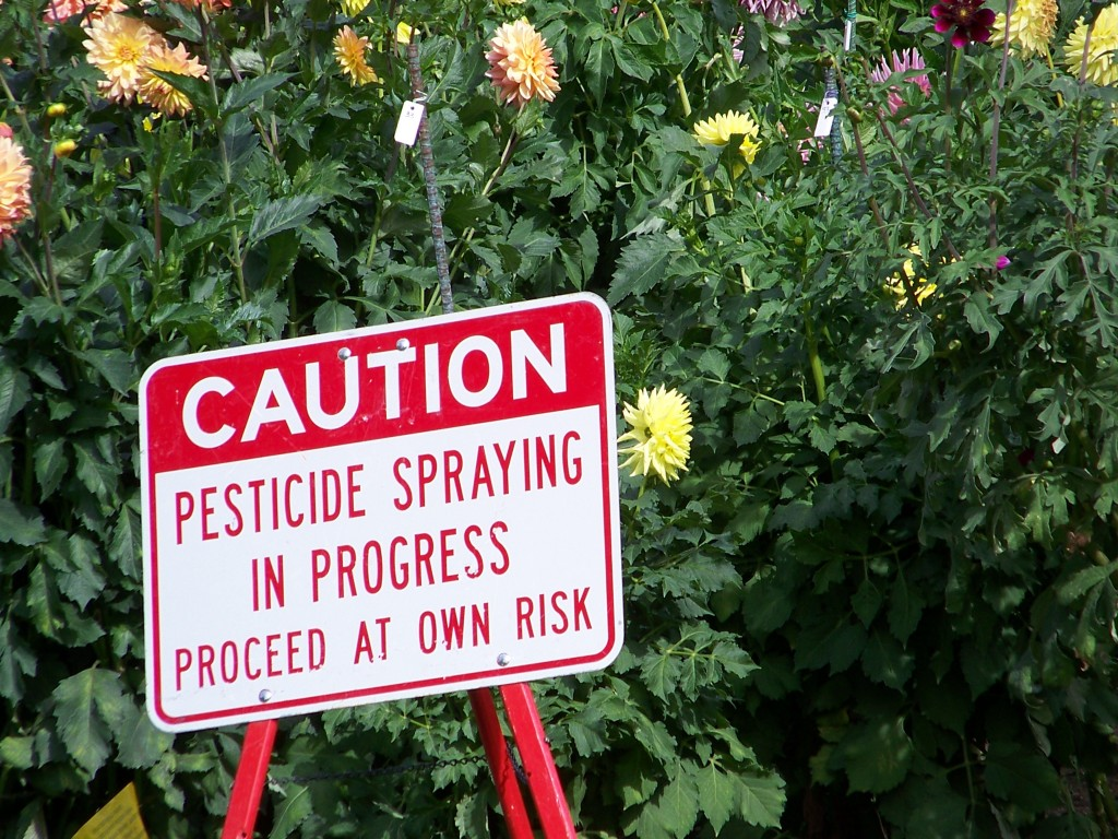 Warning signs of pesticide use can often be found on the grounds of homes that use insecticides and others. (Flickr)