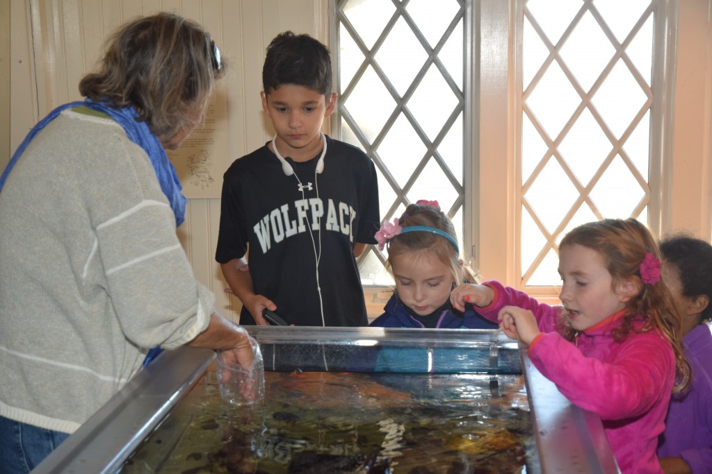 Bruce Museum Marketing and Science Curatorial Associate and Seaside Center Manager, Cynthia Ehlinger, teaches kids about the animals found in Long Island Sound during First Sunday Science. Photo by Chéye Roberson.