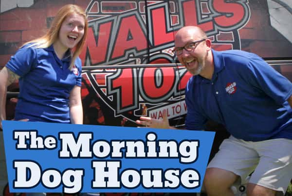 themorningdoghouse