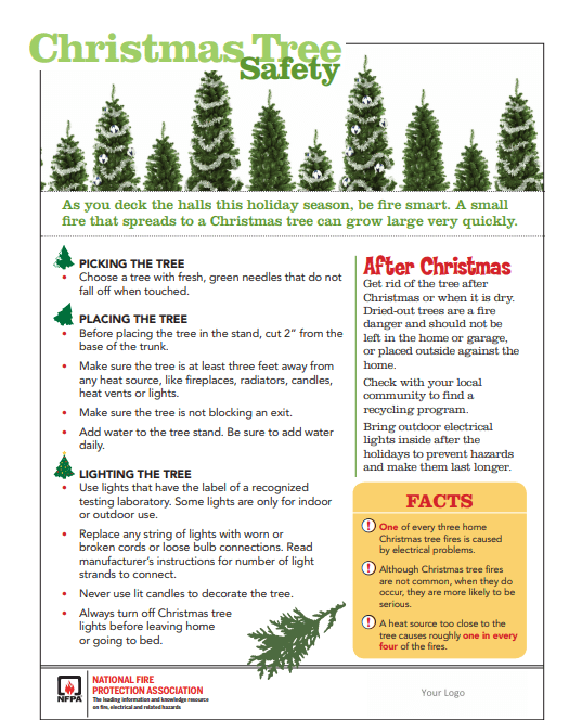 Christmas Trees Ottawa: Keep Your Home Protected With Fire-Safety Tips This