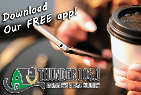Thunder Download App