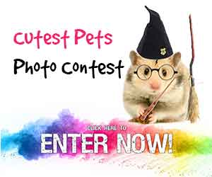 Enter Cutest Pets Contest HEre